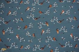 Jersey Birds Dusty Blue