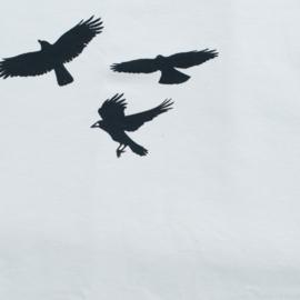 Vogelbroek lichtgrijs