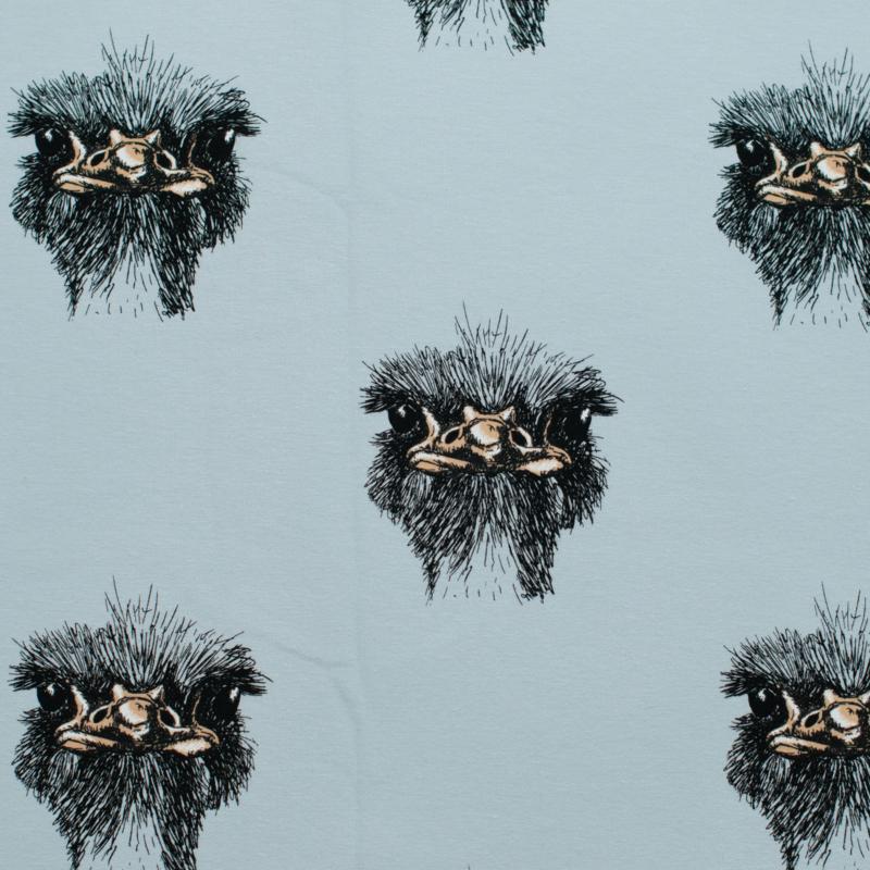 Struisvogeltrui