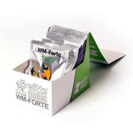Wm-Forte
