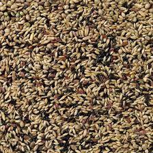 Deli nature 80 - Kanarie kweek zonder raapzaad 5kg