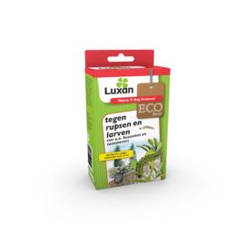Luxan Nema-T-Bag Kraussei