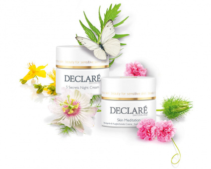 Declaré Day & Night Cadeauset (Skin Meditation 50 ml & 5 Secrets Night Cream 50 ml)