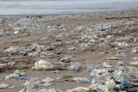Van plastic afval naar bio-brandstof