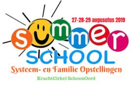 Systeem- en Familie Opstellingen Summerschool