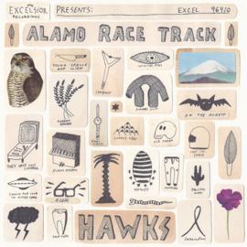 Alamo race track - Hawk