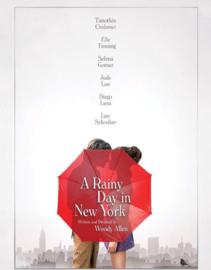 Woody Allen (2eHands & NIEUW) (DVD & Blu-ray)
