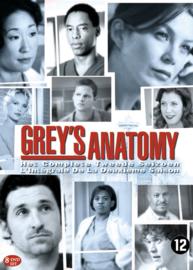 Grey's anatomy - 2e seizoen