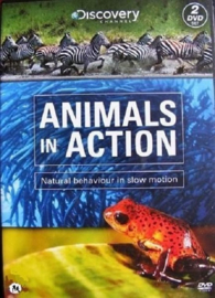 Animals in action (Discovery) 2-DVD