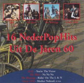 16 Nederpophits uit de jaren 60  (0204768)