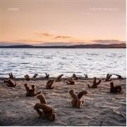 Airbag - A day at the beach (Clear vinyl)