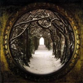Avrigus - the secret kingdom