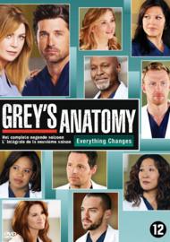 Grey's anatomy - 9e seizoen