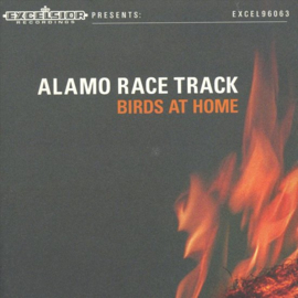 Alamo race track - Birds at home