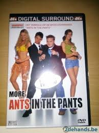 (more) Ants in the pants