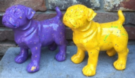 Mops hond geel spetter