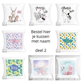 Bestel hier je kussen met naam - verschillende designs - deel 2