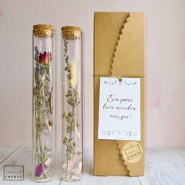 Droogbloemen in buisjes - met keuze uit vijf wenskaartjes