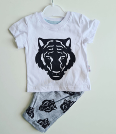 Trendy Lion Summerset