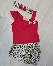Trendy Tiger Fashionista