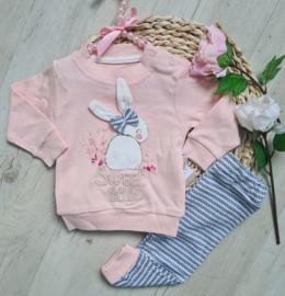 Baby Bunny Boutique
