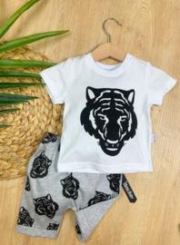 Trendy Lion Summerset