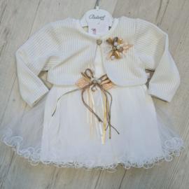 Elegant Baby Tutu Jurk + Vestje