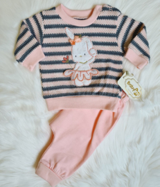 Exclusive Baby Bunny {New Collection}