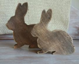 Set twee konijnen