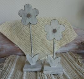 Set van twee bloemen