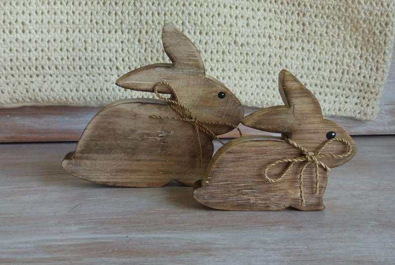 Set van 2 konijntjes