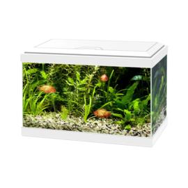 Aqua 20 LED wit 40*20*31.3cm