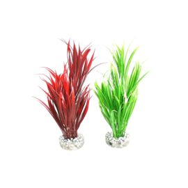 Sword Plant h:25cm