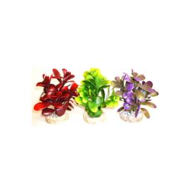 Peeble Plant h:14cm