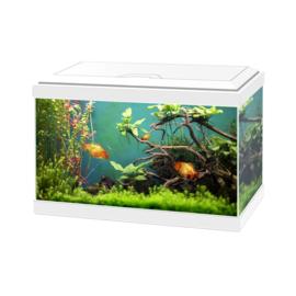 Aqua 20 Classic wit 40*20*24.8cm