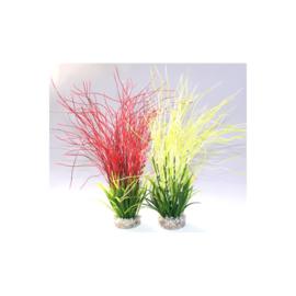 Hair Grass h:35cm