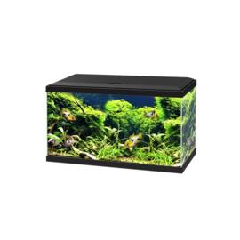 Aqua 60 LED CF80 zwart 60*30*41cm