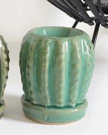 Geurbrander Cactus
