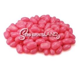 Midsize Beans Raspberry