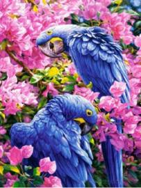 papegaaien met bloemen 60x80 cm