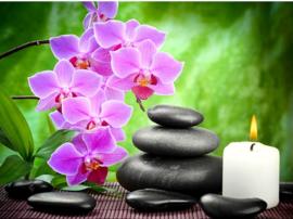relaxen met een orchidee 50x40 cm (vierkante steentjes)