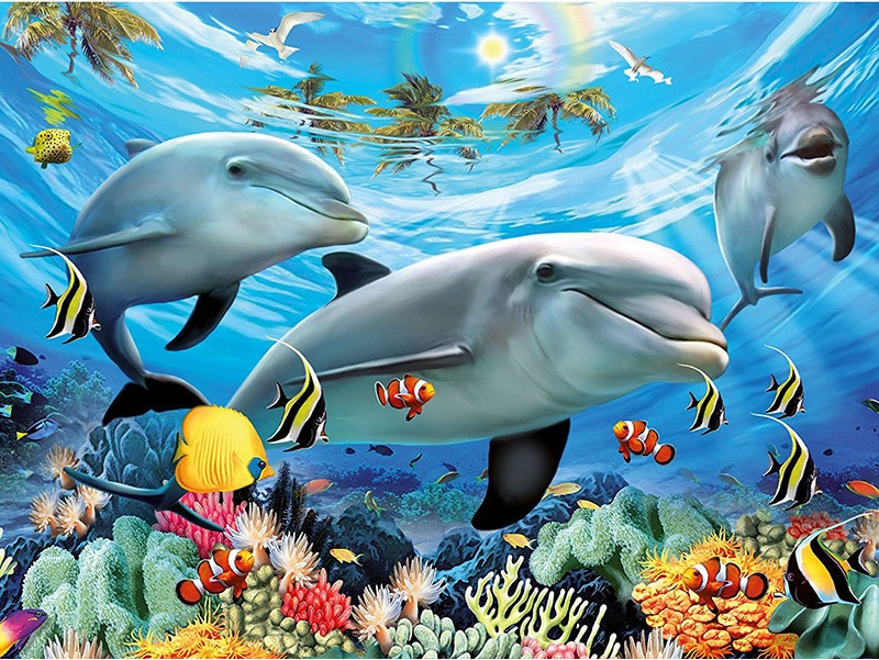 dolfijnen 50X40cm