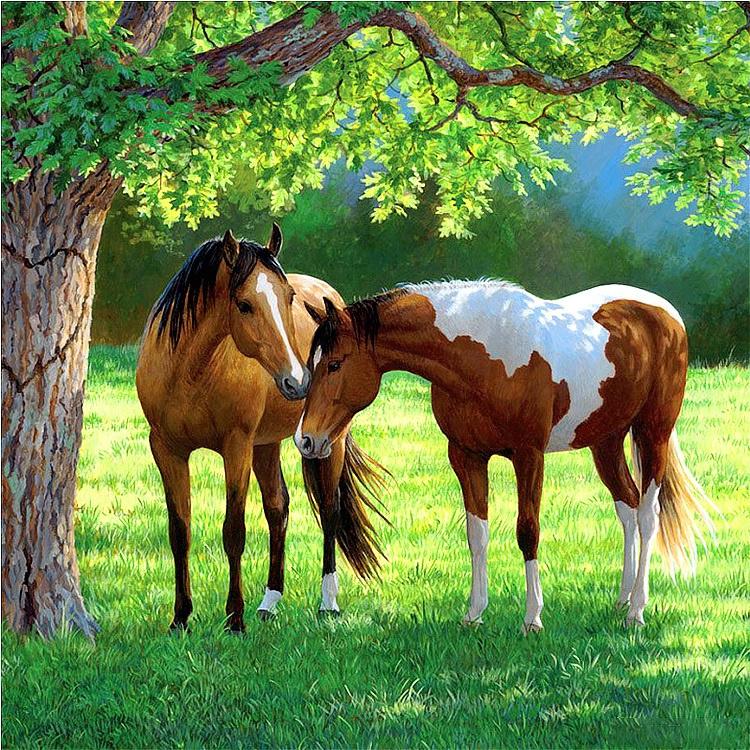 2 paarden bij boom 40X40 CM