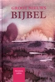 Groot nieuws bijbel, Katholieke Bijbelstichting