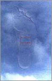 Je Voeten Je Leven Dl 1 ster-therapie, een nieuwe, zachte vorm van voetreflexologie , R. Geyssen