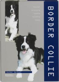 Border collie , Esther Verhoef