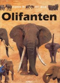 Dieren in het wild - Olifanten , B. Taylor