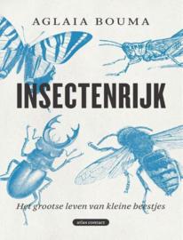 Insectenrijk Het grootse leven van kleine beestjes , Aglaia Bouma