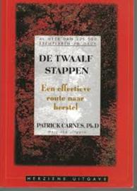 De Twaalf Stappen : een vriendelijke leidraad naar herstel de klassieke gids voor alle mensen in het herstelproces ,  P.J. Carnes