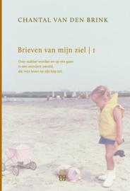 Brieven van mijn ziel 1993-1999 over wakker worden en op reis gaan in een wondere wereld, die mijn leven op zijn kop zet , Chantal van den Brink